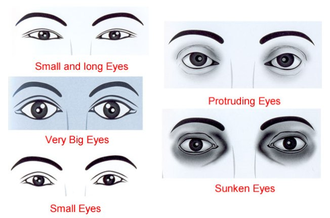 eye shapes and shadow application